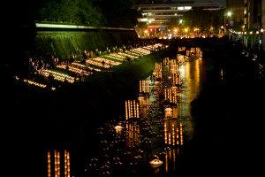 坪井川の「水あかり」